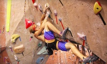One Week of Summer Camp for One or Two Kids at Summit Climbing Gym (Up to 55% Off)