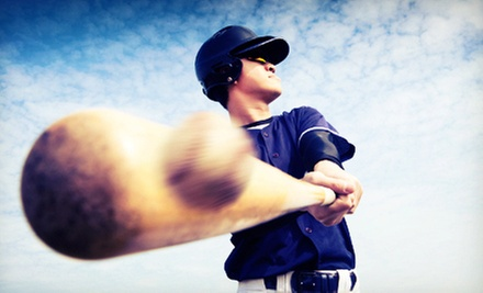 One or Three 30-Minute Private Lessons at TM Baseball & Softball Academy (60% Off)