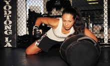 $199 for One Month of Fight Fit Boot Camp and Unlimited Training with Gear at Sityodtong USA ($968 Value)