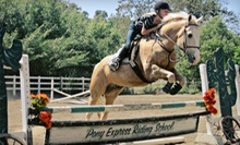 Two or Four 60-Minute Group Horseback-Riding Lessons at Pony Express Riding School (Up to 54% Off)