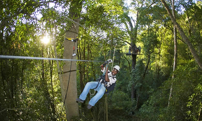 Tsitsikamma Canopy Tours - Port Elizabeth: Tsitsikamma Canopy Tour Including Drinks and Meal with Stormsriver Adventures