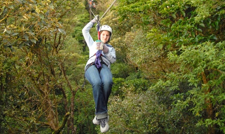 Ziplining for One, Two, or Six at Beaumont Ranch             (Up to 64% Off)