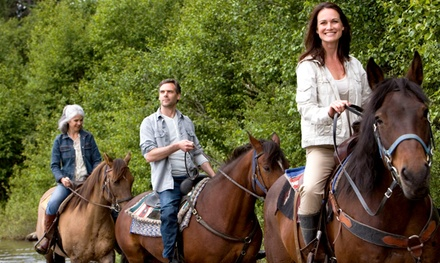 Two-Hour Guided Horseback Trail Ride for One or Two from The Red Buffalo Ranch (Up to 50% Off)