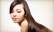$25 for a Haircut, Conditioning Treatment, Blow-Dry, and Style at Posare Salons ($75 Value)