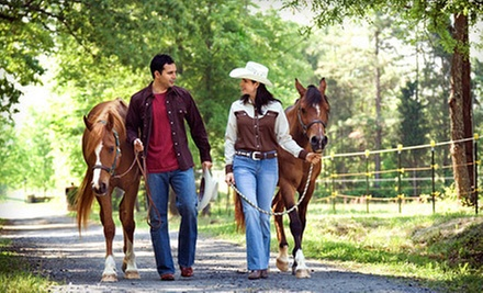 One-Hour Horseback Trail Ride for Two or Four at Douglas Lakeview Stables (Up to 52% Off)