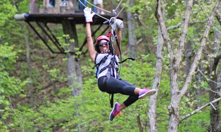 Canopy Zip-Line and Tubing Package for One, Two, or Four at Virginia Canopy Tours (50% Off)
