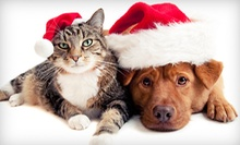 Veterinary Services for Cats and Dogs at Southern Hills Veterinary Hospital (Up to 52% Off)