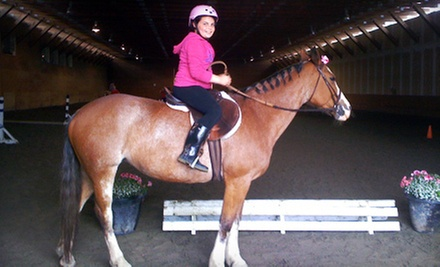 One-Hour Child, Teen, or Adult Horseback-Riding Lesson at A&amp;T Equestrian (Up to 54% Off)