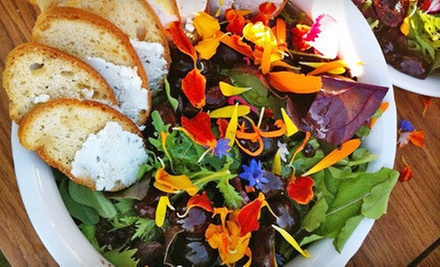Locally Sourced Dinner or Lunch for Two or Four at Seasonal 56 Restaurant (Up to 52% Off)
