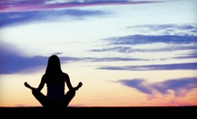 $25 for One Month of Unlimited Yoga Classes at Shiva Shanti Yoga School ($125 Value)