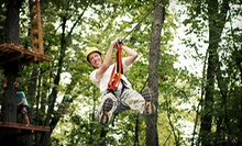 Zipline Adventure with Photos Monday–Thursday or Friday–Sunday at Markin Farms Zipline Adventures (Up to 51% Off)