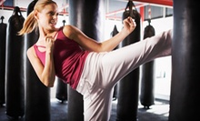 10 or 20 Boxing, Kickboxing, and Cross-Training Classes at Crescent City Boxing (Up to 81% Off)