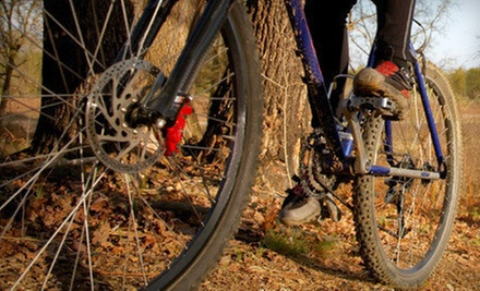 $37 for a King of the Mountain Bike Tune-Up With Brake Pads at Upgrade Cycle Works (Up to $103 Value)