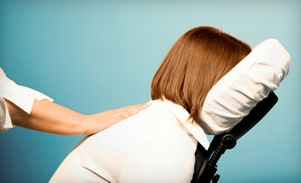 One or Two 60-Minute Massages with Chiropractic Consultation at Palatine Wellness Group (Up to 58% Off)