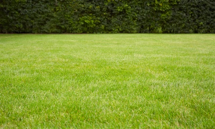 Pest Control Spray, Aeration and Overseeding, or Fertilizer Program from A+ Quality Lawn Care (Up to 66% Off)