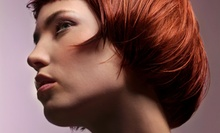 Cut and Conditioning, or Blow-Dry with Color or Partial or Full Highlights from Setsuko at Jean Claude (Up to 59% Off)