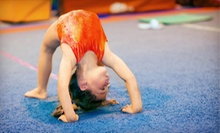 Open Gym and Gymnastics Classes for Kids and Teens at Bounce Gymnastics (Up to 68% Off). Five Options Available.