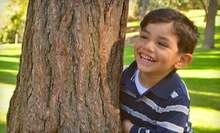 $49 for Outdoor Photo Shoot at Presidio Park with 80 Digitally Enhanced Images from Good Eye Images ($190 Value)