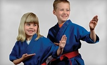 $19 for 10 Martial-Arts Classes at Pro Dojos (Up to $150 Value)