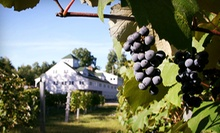 $15 for a Winery Tour for Two with Tastings, Two Souvenir Glasses, and $10 Toward Wine at Zorvino Vineyards ($30 Value)