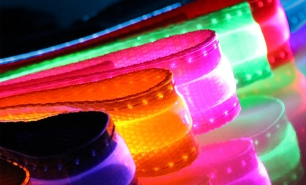 Light-Up LED Dog Safety Collars. Multiple Sizes Available from $6.99–$9.99.