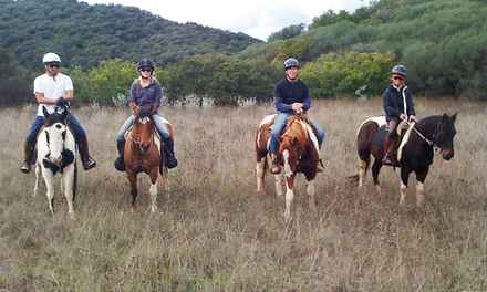 Weekday or Weekend 90-Minute Horseback Trail Ride with Instruction for One or Two (Up to 56% Off)