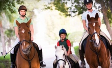 One or Three 60-Minute Group Horseback-Riding Lessons at Twisted Tree Farm, Inc. (Up to 58% Off)