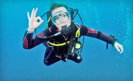 Open-Water Dive Certification Course or Discovery Dive from Dive Right In Scuba (Up to 51% Off)