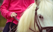Three or Five 30-Minute Private Horseback-Riding Lessons at Grandview Farm (Up to 55% Off)