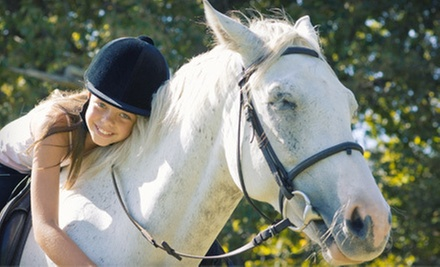 One or Three 60-Minute, Private Horseback-Riding Lessons at Family Horse Ranch &amp; Rescue (Up to 53% Off)