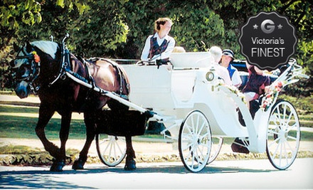 $45 for Private 30-Minute Horse-Drawn-Carriage Tour for Up to Six from Black Beauty Line ($90 Value)