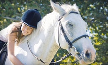 One or Three 30-Minute Horseback-Riding Lessons at Hidden Pond Stables (Up to 61% Off)