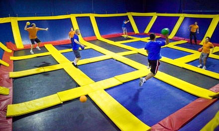 Two Hours of Jump Time or a Birthday Package at Sky High Sports (Up to 50% Off). Four Options Available.