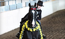 One, Three, or Five 30-Minute Horseback-Riding Lessons at John White Stables (Up to 55% Off)