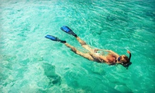 Snorkel and Paddle the Reef Tour for One or Two from Sunrise Paddleboards (Up to 62% Off)