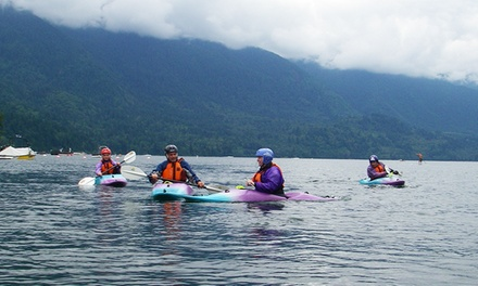 Give it a Whirl Intro Kayaking Class with T-shirt for One or Two at Purple Hayes School of Kayaking (38% Off)