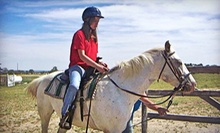 $35 for Two One-Hour Private Horseback-Riding Lessons at Prairie Winds Horsemanship ($70 Value)