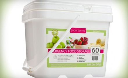 Emergency Food Supply Kit for One Month, or Freeze-Dried Meat or Fruit from The Ready Project (Half Off)