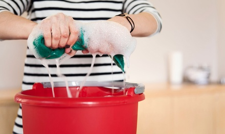 One, Three, or Six Two-Hour Housecleaning Sessions from Busy Bees Cleaning Inc (Up to 68% Off)
