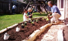 Delivery and Installation of a 2'x4' or 4'x4' Vegetable Garden from Resolution Gardens (Up to 63% Off)