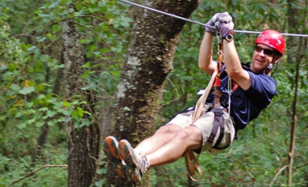 Zipline Canopy Tour or Team-Building Exercise with Zipline Canopy Tour at ZipQuest (Half Off)