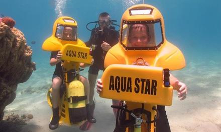 חווית צלילה בצוללת אישית, למעמקי השוניות באילת: צלילת יחיד רק ב-160 ₪, תקף גם בסופ