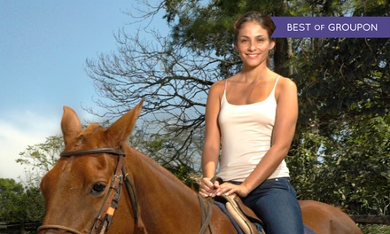 Horseback Trail Ride for One, Two, or Four at Happy on Hooves (Up to 60% Off)
