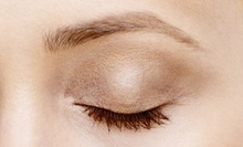 Eyelift for the Upper or Lower Eyelids at Holistic Medical Spa &amp; Laser Center of Westchester (60% Off)