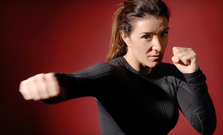 $29 for 1 Month of Unlimited Cardio Boxing, Kickboxing, & Combat Cardio at Krav Maga Alliance/Worldwide ($98 Value)