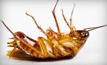 $29 for an Interior and Perimeter Pest-Control Treatment from Bad Bugs Pest Control ($95 Value)