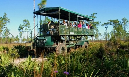 Coach Safari for One, Two, or Four from Florida EcoSafaris (Up to 46% Off)