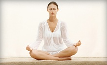 $39 for One Month of Unlimited Yoga at Yoga Shala (Up to $108 Value)
