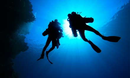 PADI Scuba Certification Packages at Planet Scuba (Up to 51%Off). Three Options Available.