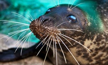 $25 for a One-Year Family Membership to Aquarium of Niagara ($50 Value)